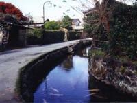 藍場川・写真