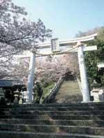花岡八幡宮・写真