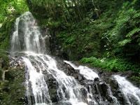 秋芳白糸の滝・写真
