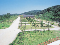 竜王山公園オートキャンプ場・写真