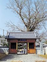 地蔵寺・写真