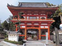 金泉寺・写真