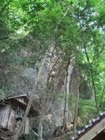 立岩神社・写真