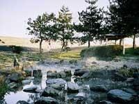 江川湧水源・写真