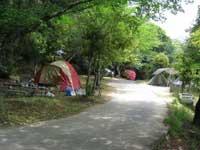 美濃田の渕キャンプ場・写真