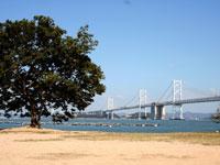 沙弥島・写真