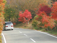 ブルーライン(寒霞渓公園線)・写真