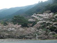 成川渓谷・写真