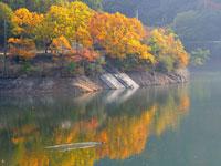 大谷池・写真