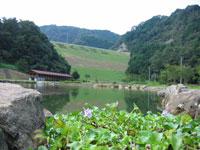 朝倉ダム湖畔緑水公園・写真