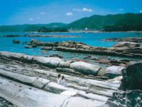 たつくし海中観光・写真