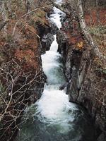 荒沢の滝・写真