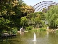 到津の森公園・写真