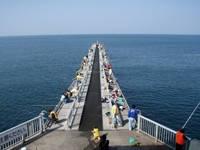 脇田海釣り桟橋・写真