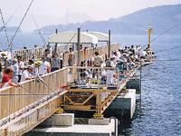 飛島磯釣り公園・写真