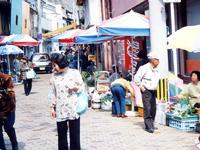 勝本朝市・写真