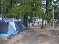 白浜海水浴場キャンプ場・写真