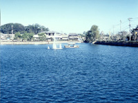 白土湖・写真