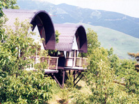 青少年の森キャンプ場「風の里」・写真