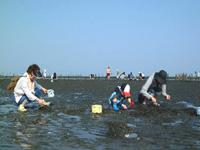長浜海岸 潮干狩り・写真