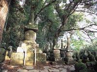 財前家墓地・写真