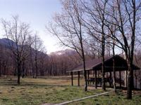 くじゅう自然動物園オートキャンプ場・写真
