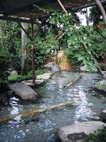 八面山金色温泉・写真