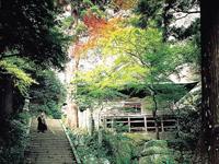 文殊仙寺の紅葉・写真