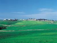 高千穂牧場・写真