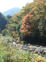 五ヶ瀬渓谷・写真