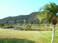 指宿フラワー公園