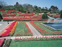 吉野公園・写真