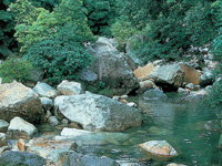 猿ヶ城渓谷・写真