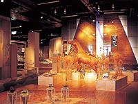 指宿市考古博物館 時遊館COCCOはしむれ・写真