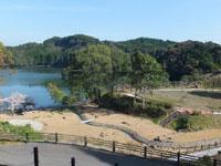 住吉池公園キャンプ村・写真