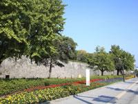 鶴丸城跡(鹿児島城跡)・写真
