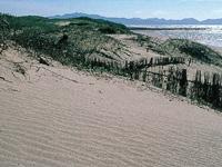 吹上浜・写真