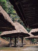 大和浜の群倉・写真