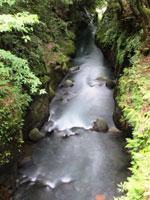 霧島神水峡・写真