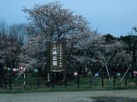 三崎山旧街道・写真