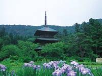 安久津八幡神社・写真