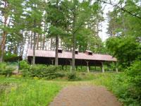 山形県県民の森野営場・写真