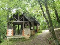 大山自然公園キャンプ場・写真