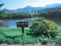 鴫の谷地沼・写真