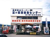 鼠ヶ関港鮮魚センター・写真