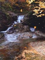 籟音の滝・写真
