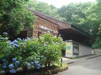 福島市小鳥の森・写真