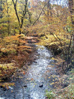 八溝山(福島県)・写真
