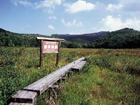 宮床湿原・写真