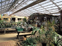 Herb Harmony Garden・写真